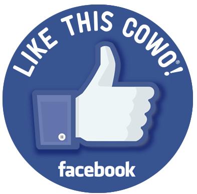 Pagina Facebook Busto Arsizio